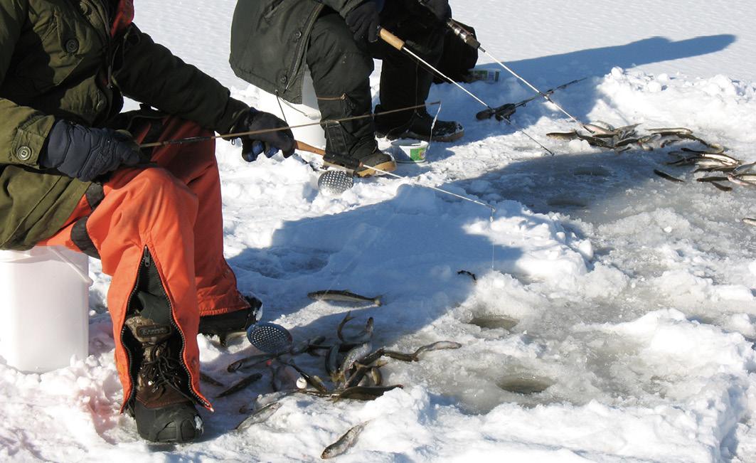 Meist werden mehrere Eislöcher gleichzeitig beangelt