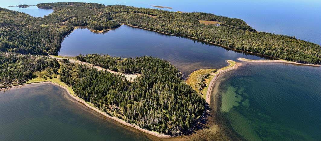 Erschließungsareal von Canadian Pioneer Estates Ltd. mit zwei Adlernestern