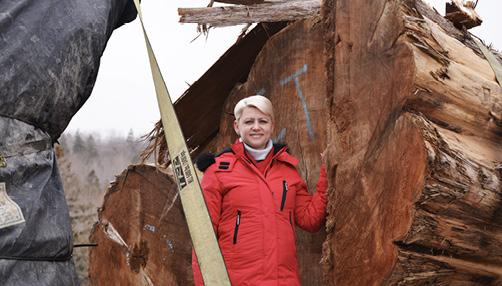Elena Paul inspiziert den Stamm